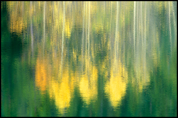 Reflections of Aspens - ©Leslie Degner