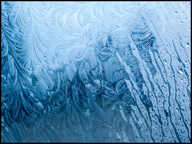 Frost patterns-3, Canon Powershot G11, ©Leslie Degner