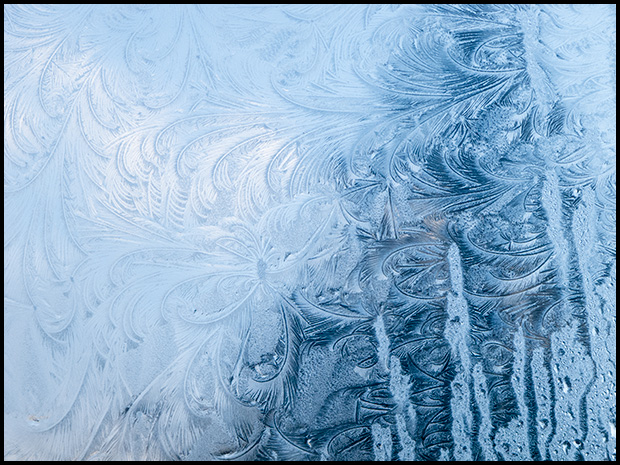 Frost patterns-1, Canon Powershot G11, ©Leslie Degner