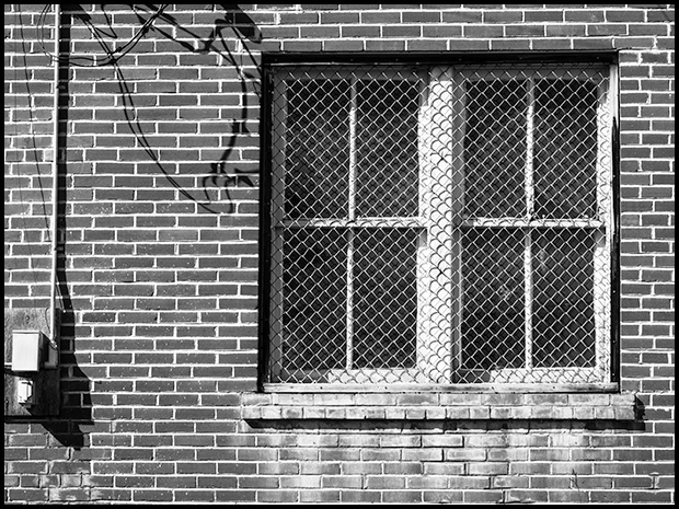 Bricks and Window, Olympus OMD E-M5, Olympus 12-50mm f3.5-6.3 ©Leslie Degner