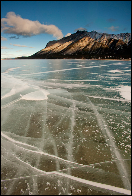 Cracked surface of frozen Lake Abraham