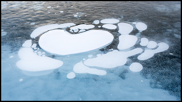 Heart shaped bubble in lake