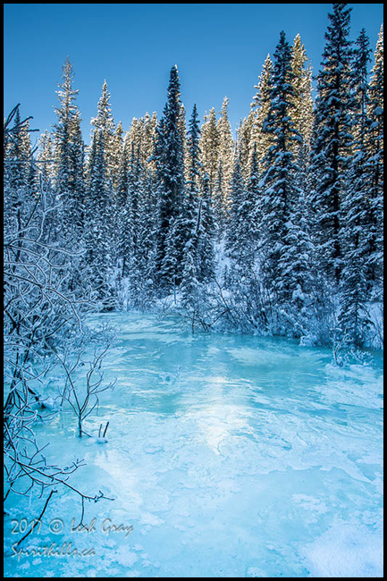 Icy blue creek