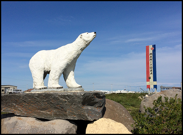 Polar Bear Sculpture in Churchill