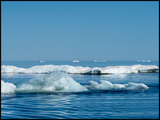 Small icebergs in Hudson Bay