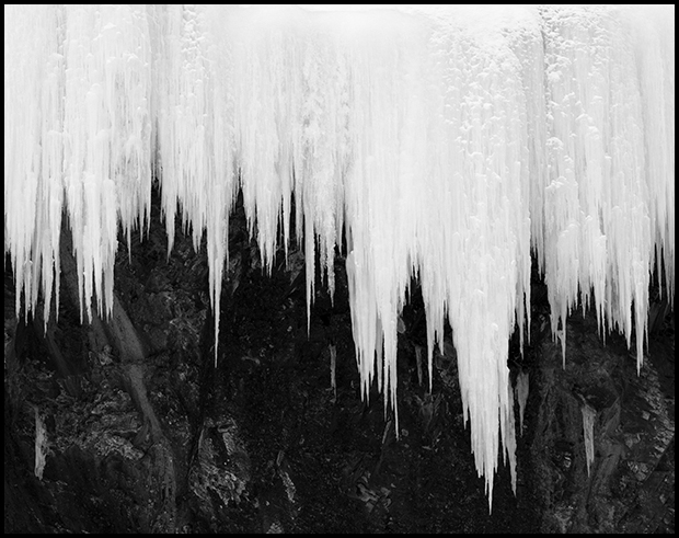 Icicles in black and white